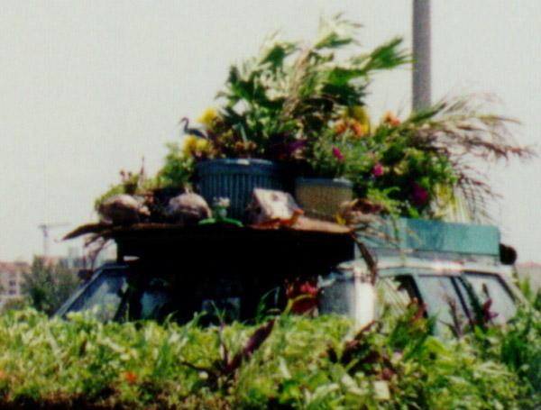 plantcar2a.jpg